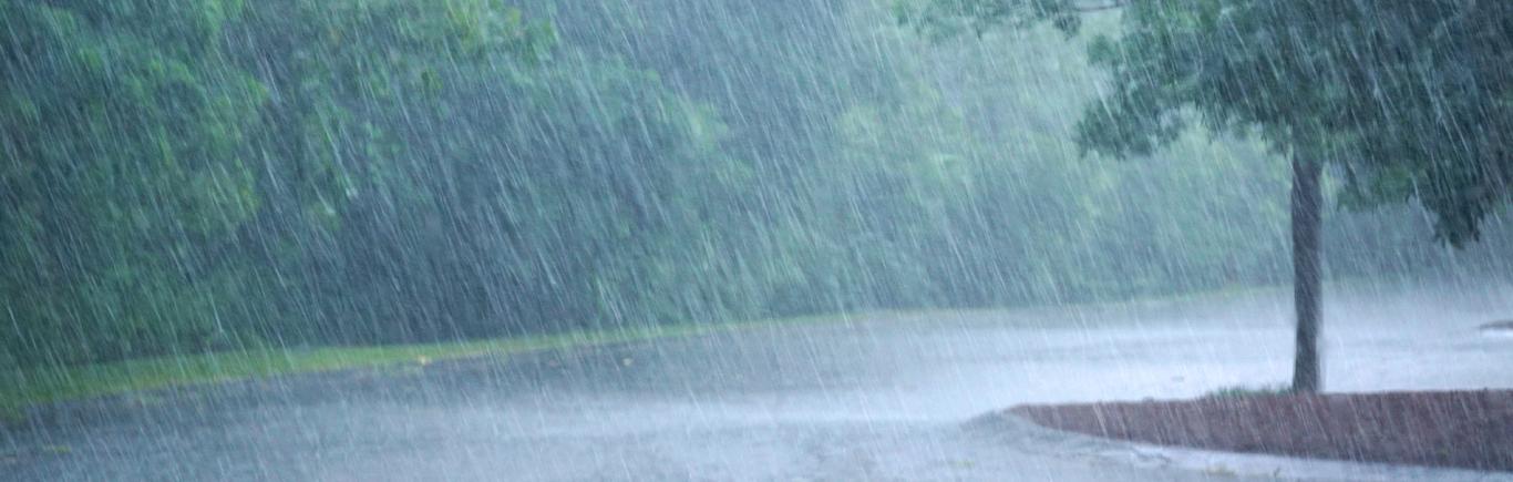 Temporada de lluvias: consejos útiles